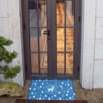 ins门口地垫进门蹭脚垫家用入户卧室丝圈门垫厨房脚垫防滑垫子